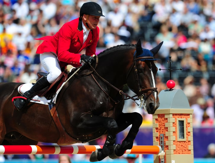 Belgian Warmblood Horse Breeds And Types In Olympic