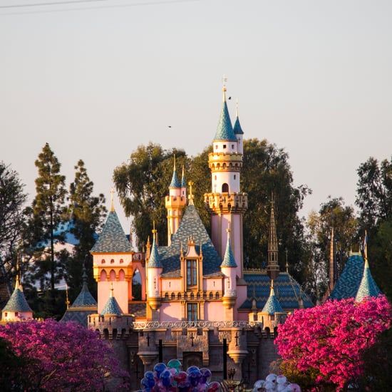 What Is Maxpass at Disneyland?