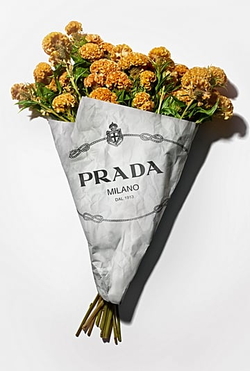 Prada Exhibition at London Design Museum 2020