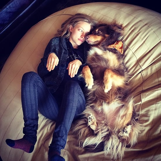 Amanda Seyfried and Her Dog Finn's Instagram Pictures
