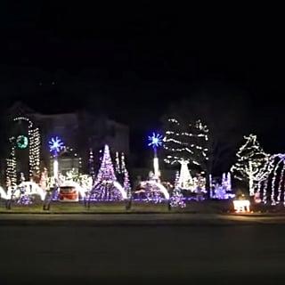 Baby Shark Christmas Lights Display