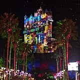 Disney's Hollywood Studios: Sunset Seasons Greetings