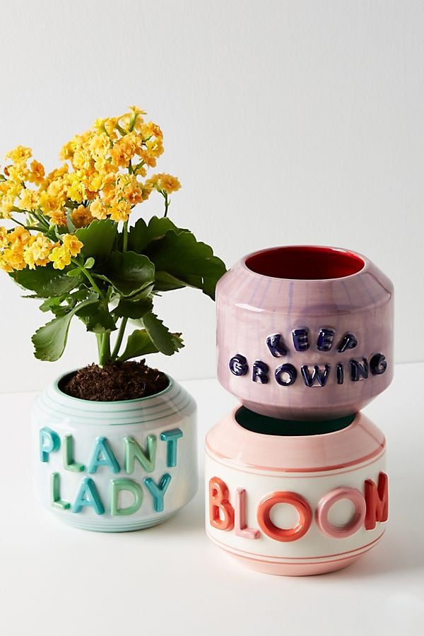 Garden Greeting Pots