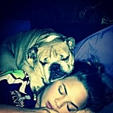 Chrissy Teigen got snuggly wuggly with her peaceful pooch. Source: Instagram user chrissyteigen