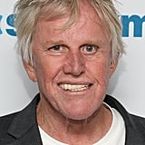 Gary Busey Now