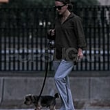 First photos of new mom Natalie Portman with dog Whiz.