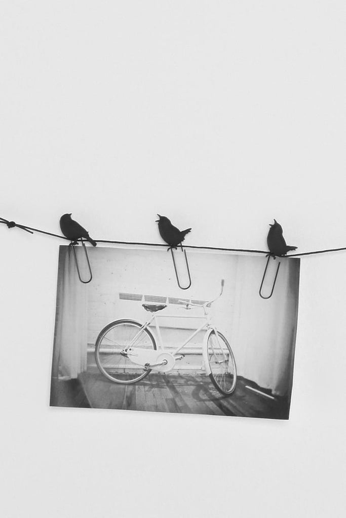 This Birds on a Wire photo clip set ($10) screams hipster — even more so if they're accompanied by black-and-white photos.