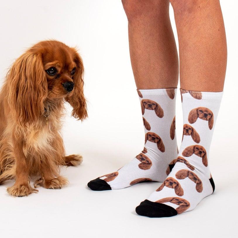 Sock Your Pet Personalized Pet Socks