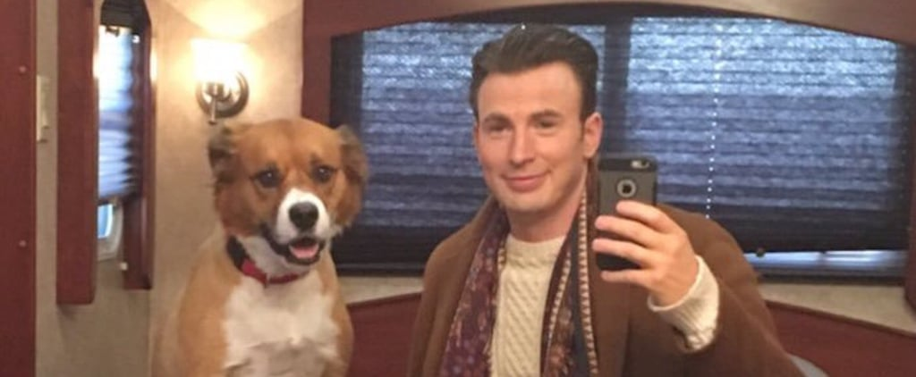 Pictures of Chris Evans and His Rescue Dog, Dodger