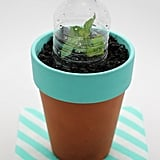 Mini Water Bottle Green House