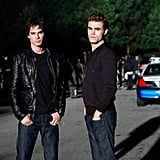 Damon and Stefan Salvatore From The Vampire Diaries