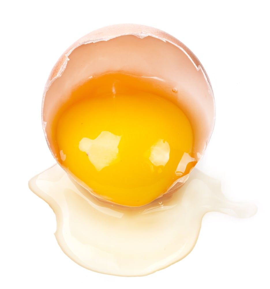which is better egg white egg yolk nutritional breakdown
