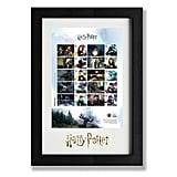 Harry Potter Framed Collector Sheet