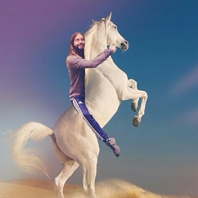 Jared Hugging a Horse