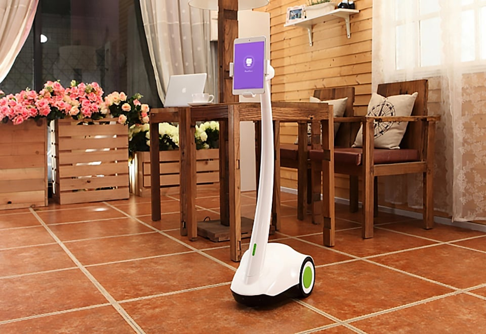 Home and Pet Surveillance Robot​