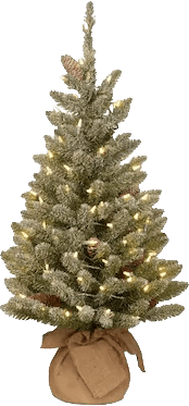 National Tree Company 3-ft Pre-Lit Snowy Concolor Fir Tree