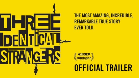 Three Identical Strangers True Story