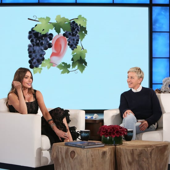 Sofia Vergara Guessing English Expressions on The Ellen Show