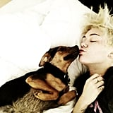Miley Cyrus gave us a detailed view of her cool and edgy new haircut.