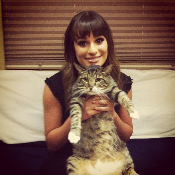 She posed with Chris Colfer's cat, Brian, in September 2012. Source: Instagram user msleamichele
