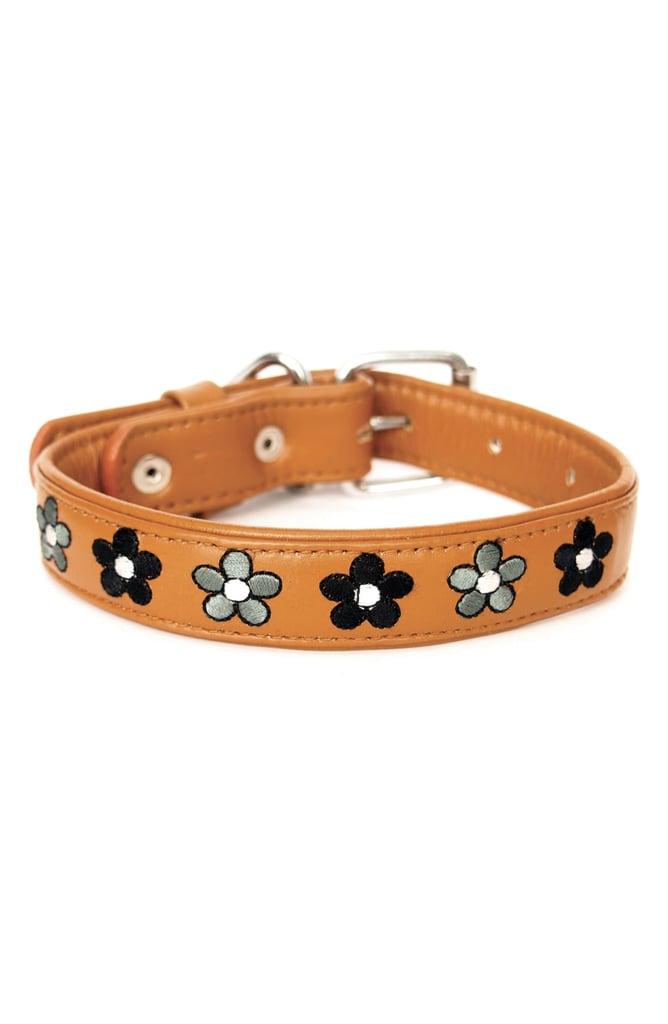 Georgie Paws Jeanne Leather Dog Collar