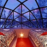 Watch the Night Sky From a Glass Igloo