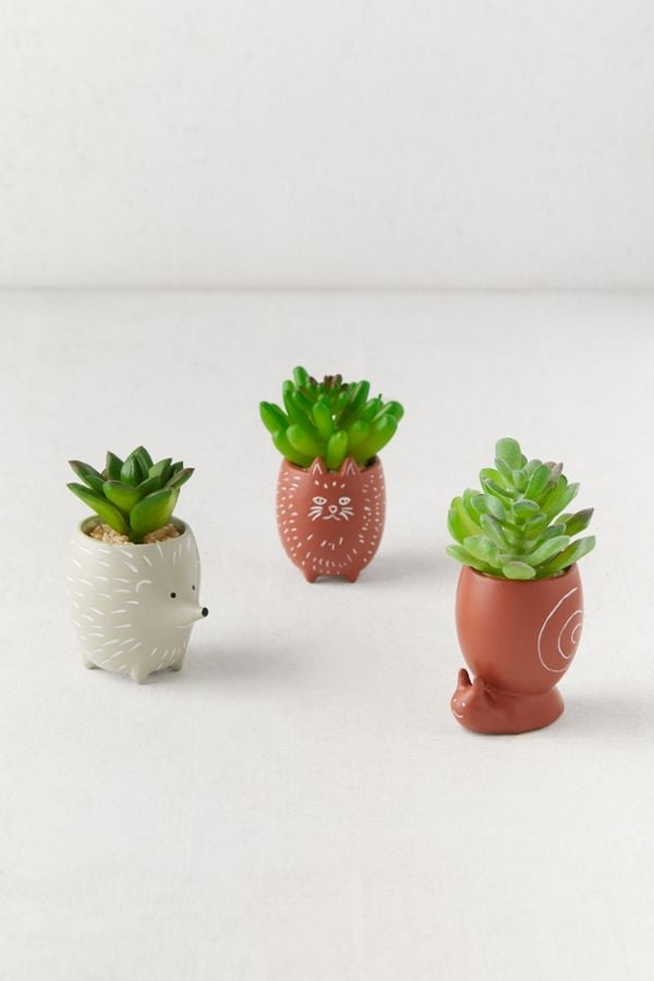 Tiny Animal Pot Faux Succulent