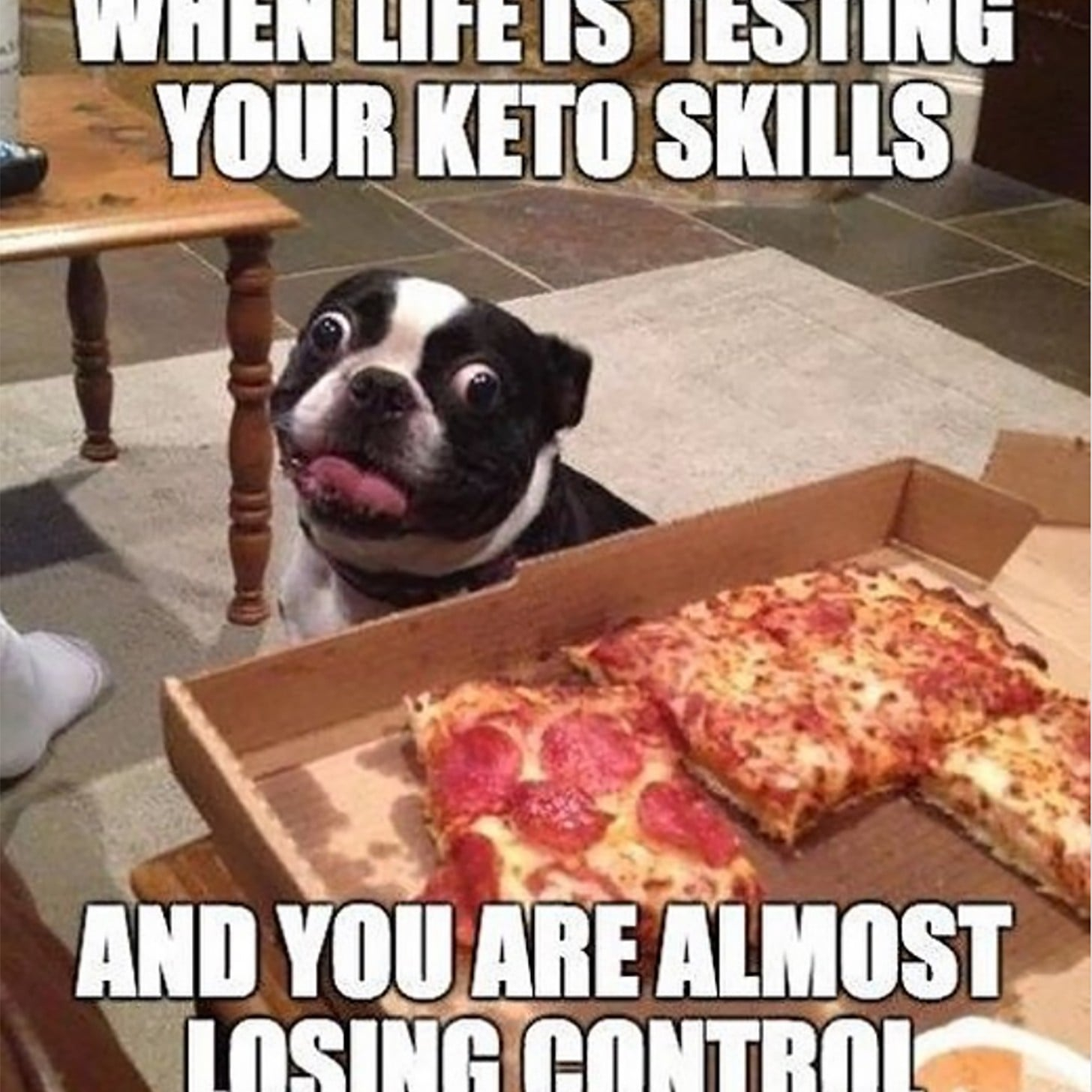 funny quotes about keto diet