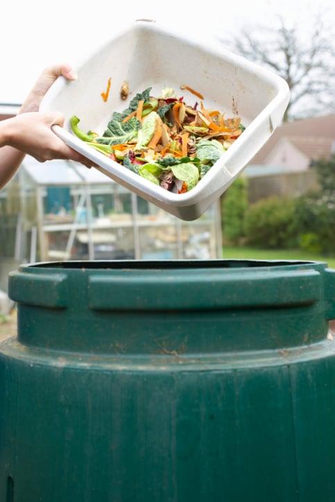 Compost Kitchen Scraps