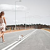 Go on a long walk.