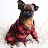 Fab Dog Buffalo Check Pajamas