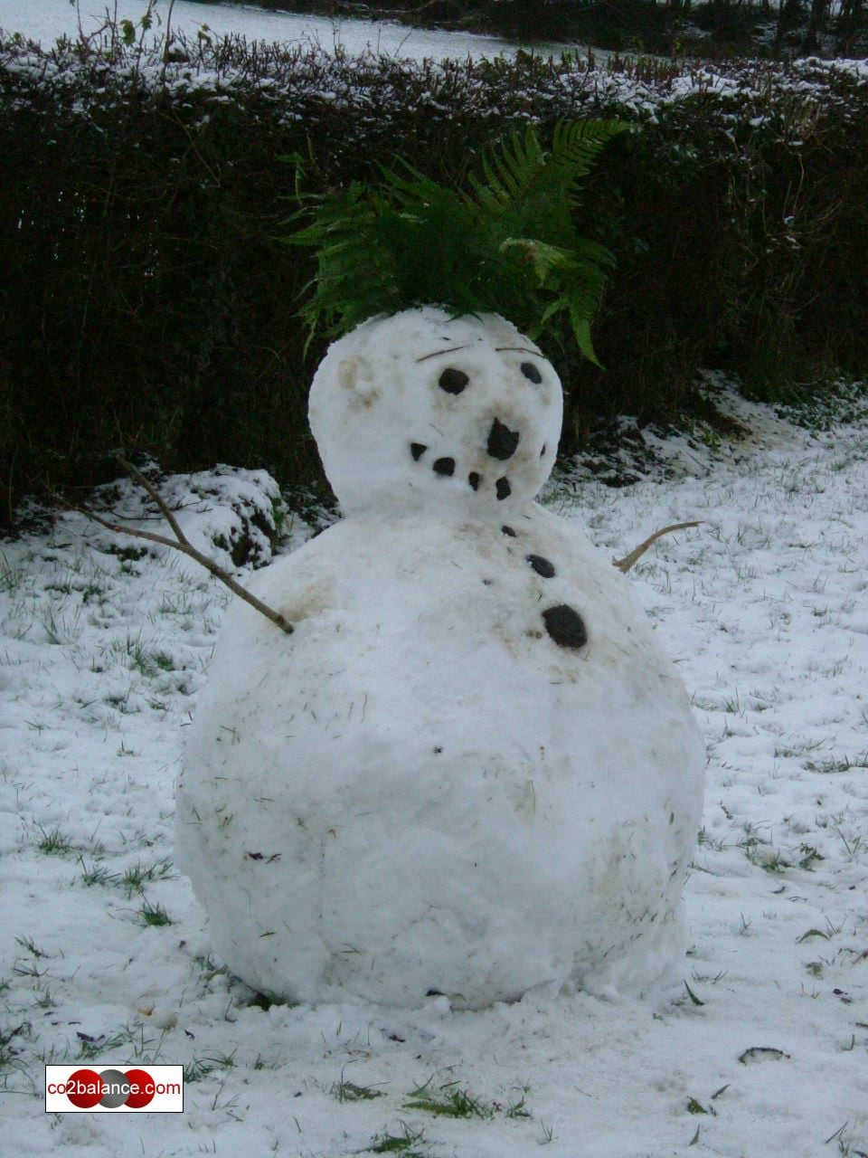 snowman near river