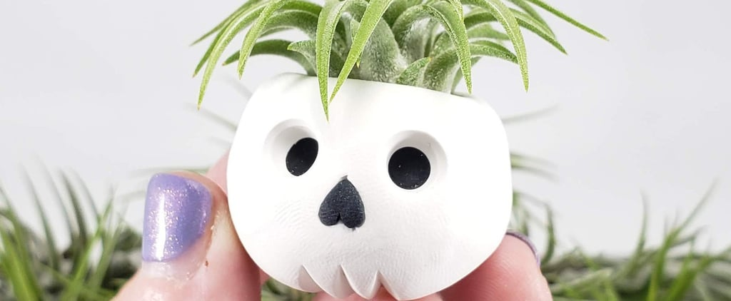 Mini Halloween Air Planters on Etsy