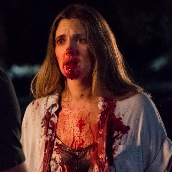 Santa Clarita Diet Netflix TV Show Details