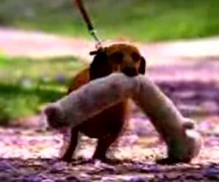 A Little Cute Goes A Loooooong Way