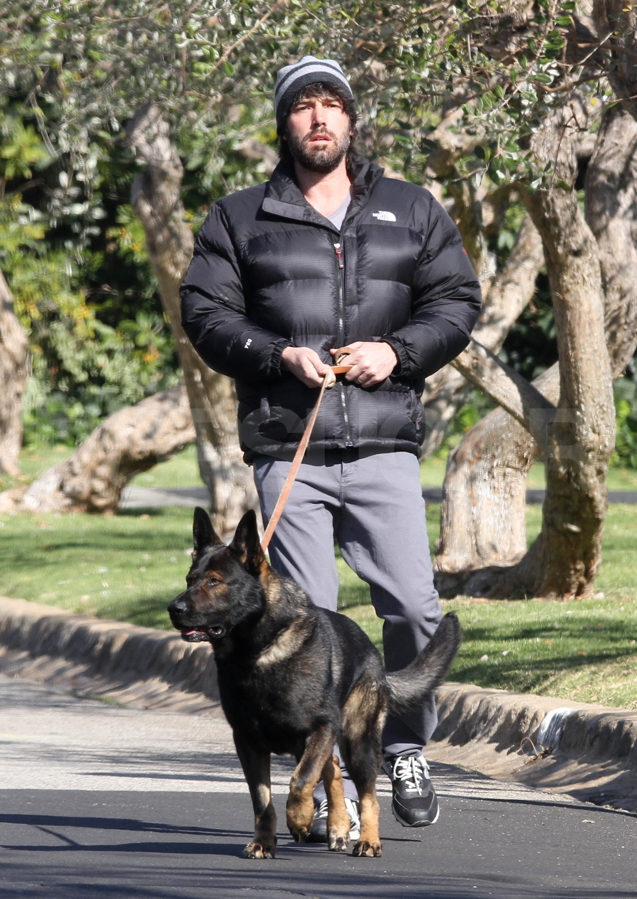 Ben Affleck went for a walk with his dog.