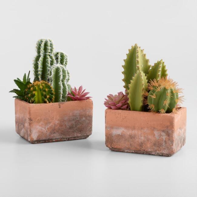 Faux Mixed Cactus and Succulent Arrangement