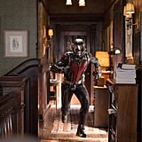 Ant-Man From Ant-Man