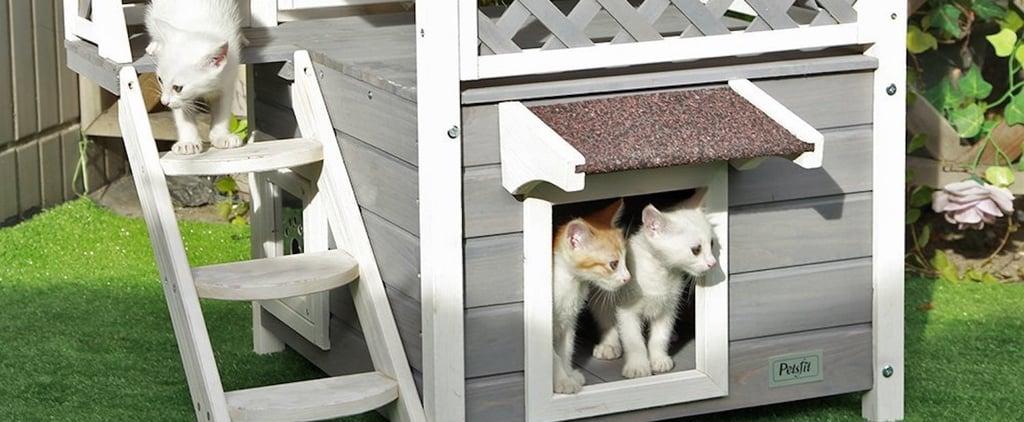Best Cat House on Amazon