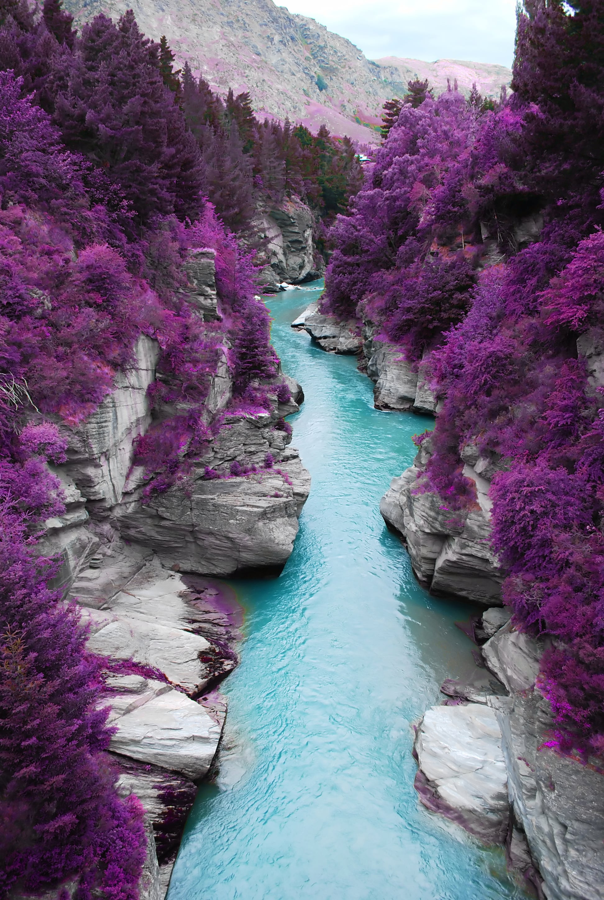 Shotover River in New Zealand (Doctored)