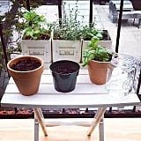 Create a whole balcony herb garden if you're a city-living chef.