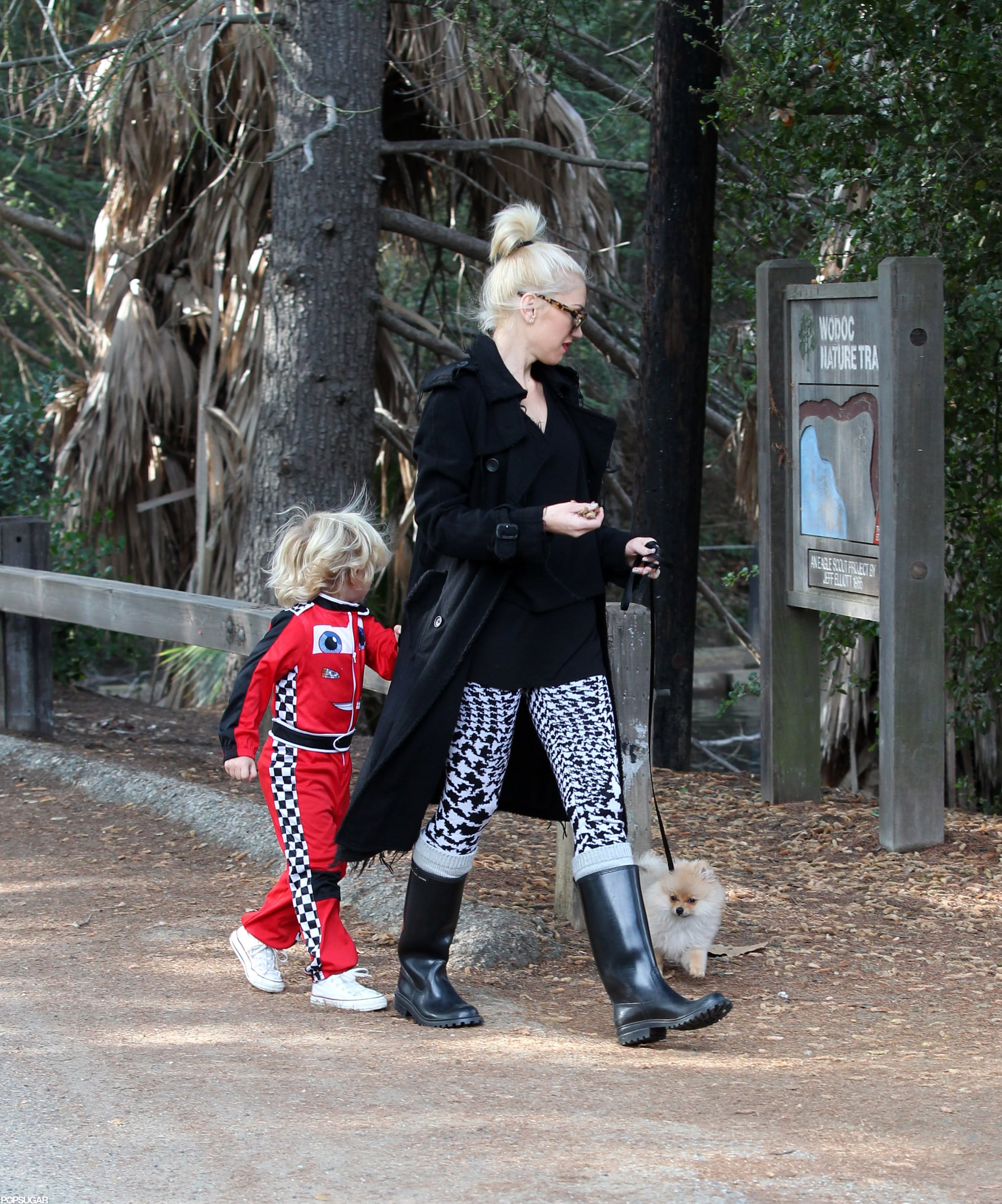 Gwen Stefani and Zuma took the dog to a park together in LA.