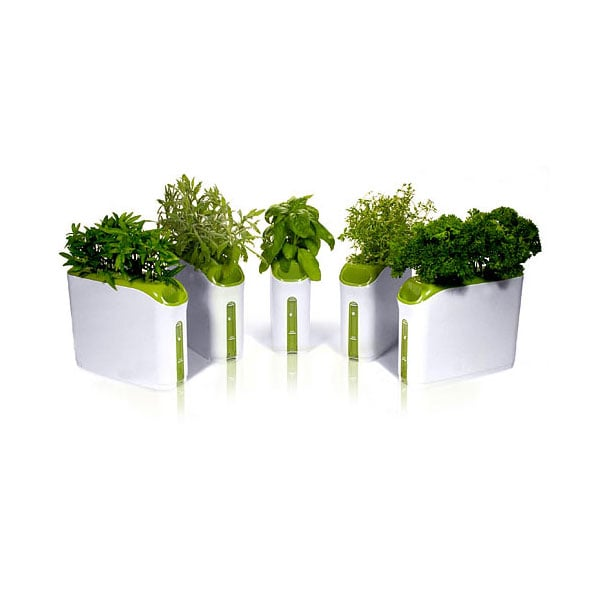 Power Plant Herb Garden ($10 and Up)