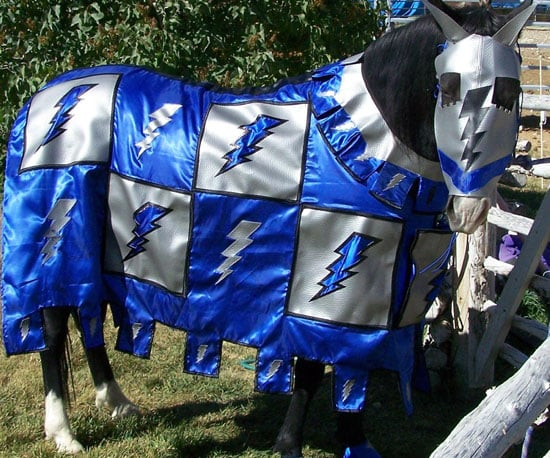 The Horse Tailor Horse Costumes