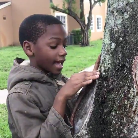 Boy Who Loves Science Posts Viral Video About Trees