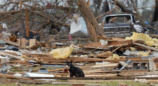 Huge Storms In Iowa and Minnesota Kill Eight