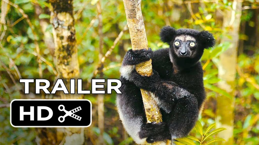 Island of Lemurs: Madagascar