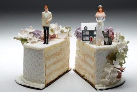 Pet Friendly Ideas for Wedding Shower Festivities