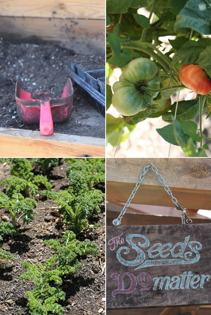 Gardening Tips For Beginners POPSUGAR Food