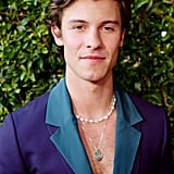Shawn Mendes's Suit at the American Music Awards 2019